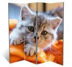 Котенок, двухсторонняя