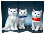 Котята, двухсторонняя