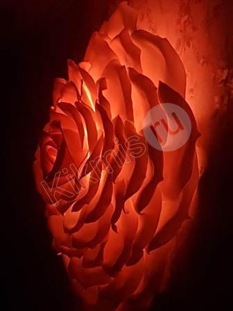 бра,бра цветы,цветы светильники,торшеры напольные,купить торшер напольный,напольные торшеры недорого,ростовые цветы светильники,цветы светильники +из изолона,светильник +из ростовых цветов,светильники +в виде цветов, цветы светильники купить,большие цветы светильники,светодиодные светильники +с цветами,,светильники +из ростовых цветов +из изолона, ростовые цветы светильники +из изолона,светильник напольный цветок,цветы светильники фото,светильники +в форме цветов, цветы светильники цена,светильники +в виде