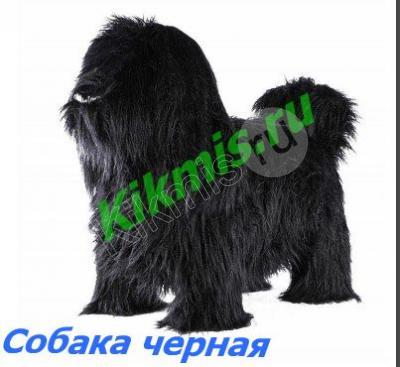 Пуф Собака пушистая мех. черная мини,купить пуф,пуф банкетка,прихожая банкетка,банкетка купить,пуф собака,паудер пуф собака,паудер пуф китайской хохлатой собаки,